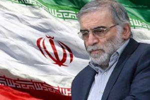 ظريف: اغتيال العالم محسن فخري زادة عملية إرهابية وعمياء